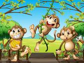 Tři opice na dřevěný most