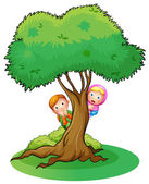 Illustration of kids hiding at the big tree on a white background