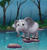 Slon překročení řeky pomocí velké kameny