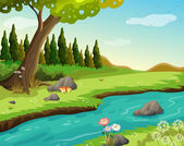 A river at the forest