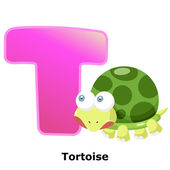 Illustration of isolated animal alphabet T with tortoise on white