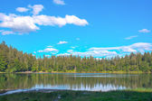 Panorama landscape view over lake and pine tree and clouds black forest Germany