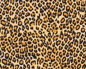 Leopardí kůže