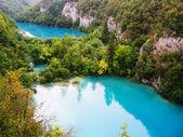 Kaskáda krásná jezera v národním parku Plitvická jezera, Chorvatsko