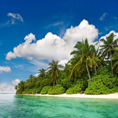 Landscape of tropical island beach