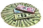 Sto a dvě stě turecké peníze a dolar na bílém pozadí