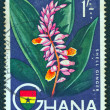 Постер, плакат: GHANA CIRCA 1959: A stamp printed in Ghana shows a Shell Ginger flower circa 1959