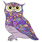 Vector illustration of colorful hand drawing owl