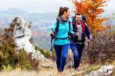 Glückliches Paar-Wandern