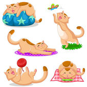 Set of cats in different positions