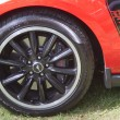 Постер, плакат: 2012 Ford Mustang Boss 302 car Close up