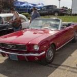Постер, плакат: 1966 Red Ford Mustang Convertible Side View
