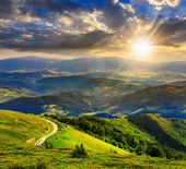 Mountain slope with forest in summer at sunset