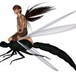 Постер, плакат: Fairy Dragonfly Rider