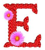 Písmeno e z červených listů a květů aster