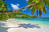 Beautiful Seychelles islands