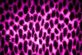 Leopard skin texture