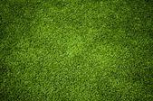 Sfondo di una trama di erba verde