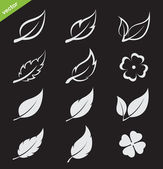 Vector leaves icon set on black background