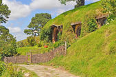 Walkway at hobbiton