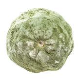 Plesnivé citron textura izolovaných na bílém pozadí