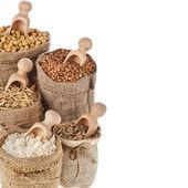 Kukuřici jádra semen moučka a zrna v pytlích s dřevěnou naběračku izolovaných na bílém pozadí