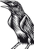 Simple drawing of a crow
