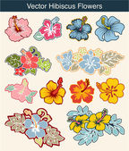 Set of hibiscus flowers in different style