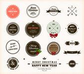 Vánoční dekorace kolekce. sada kaligrafické a typografické prvky, rámečky, vintage kruh popisky, stuhy, hranice, cesmína bobule a sněhové vločky