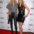 Постер, плакат: Malin Akerman and Devon Aoki