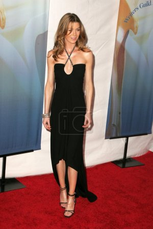 Постер, плакат: 2006 Writers Guild Awards Arrivals, холст на подрамнике