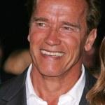 Постер, плакат: Arnold Schwarzenegger