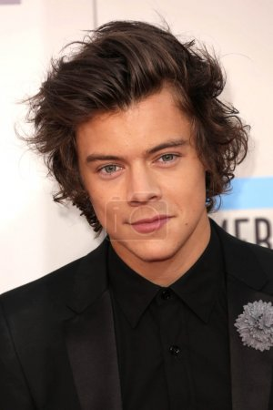 Постер, плакат: Harry Styles, холст на подрамнике