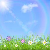Natural background with blue sky sun clouds rainbow green grass and multicolored flowers