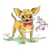 Illustrazione con cane chihuahua carino piccolo isolato a mano