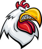Angry rooster