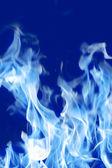Požární blue