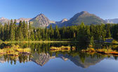 Spring natural Lake in Slovakia Tatra mountain