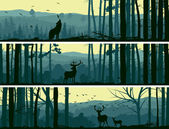 Horizontal abstract banners of wild animals (deer wolf) in hills of forest with trunks of trees in green tone