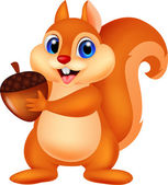 Illustration of Squirrel cartoon with nut