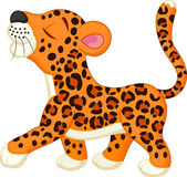 Cute leopard cartoon isolated white