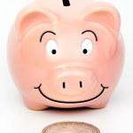 Постер, плакат: Piggybank found a Silver Dollar