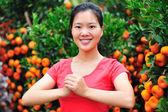 šťastný čínský Nový rok