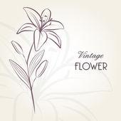 Ruční kreslení květinové pozadí s lily květina