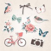 Vintage things set-birdsbowsflow ersbikecamerabut terflies on grunge background