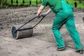 Spingendo un rullo da prato in un giardino
