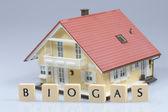 Využití bioplynu pro dům