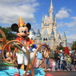Постер, плакат: Mickey Mouse in Magic Kingdom Orlando