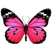 Farfalla rosa fumetto vettoriale