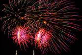 Ein Bild des explodierenden Feuerwerk in der Nacht